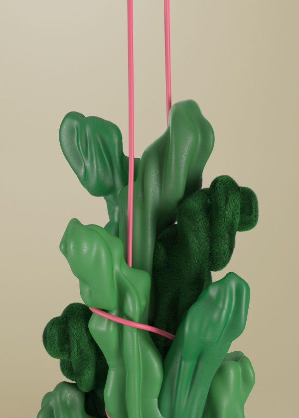 In House Project – Cactus
