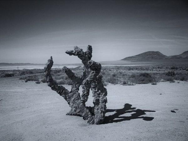 Forgotten Phenomena
